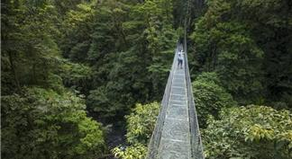Hanging bridge over the forest near Arenal Volcano